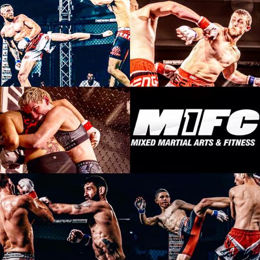 Eternal MMA fight-1